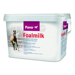 Pavo FoalMilk